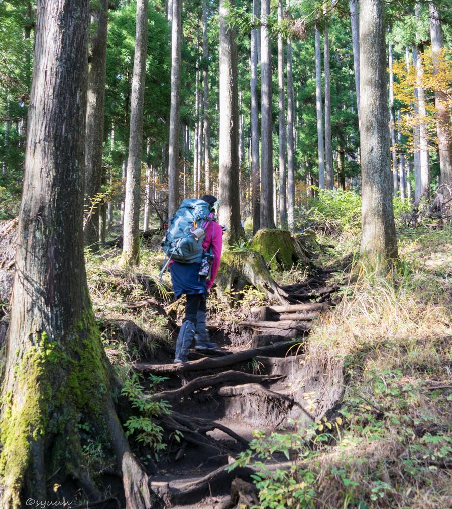 鍋割山へ登山道