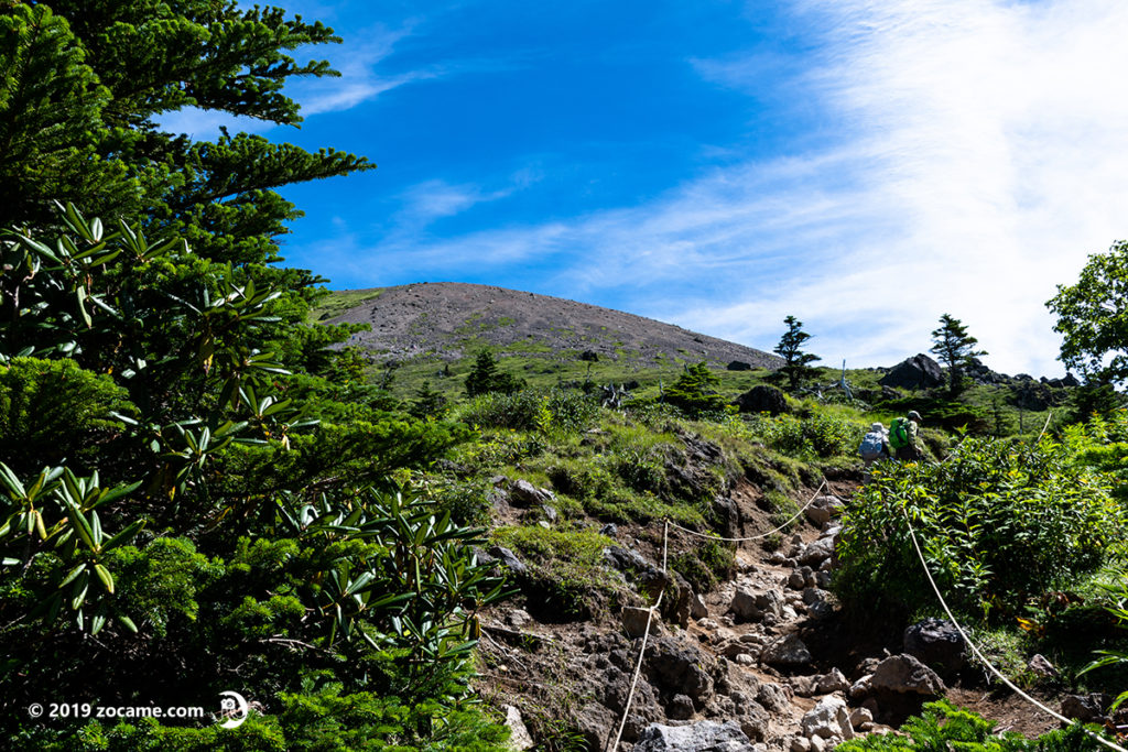 お盆の日光白根山登山道の様子森林限界