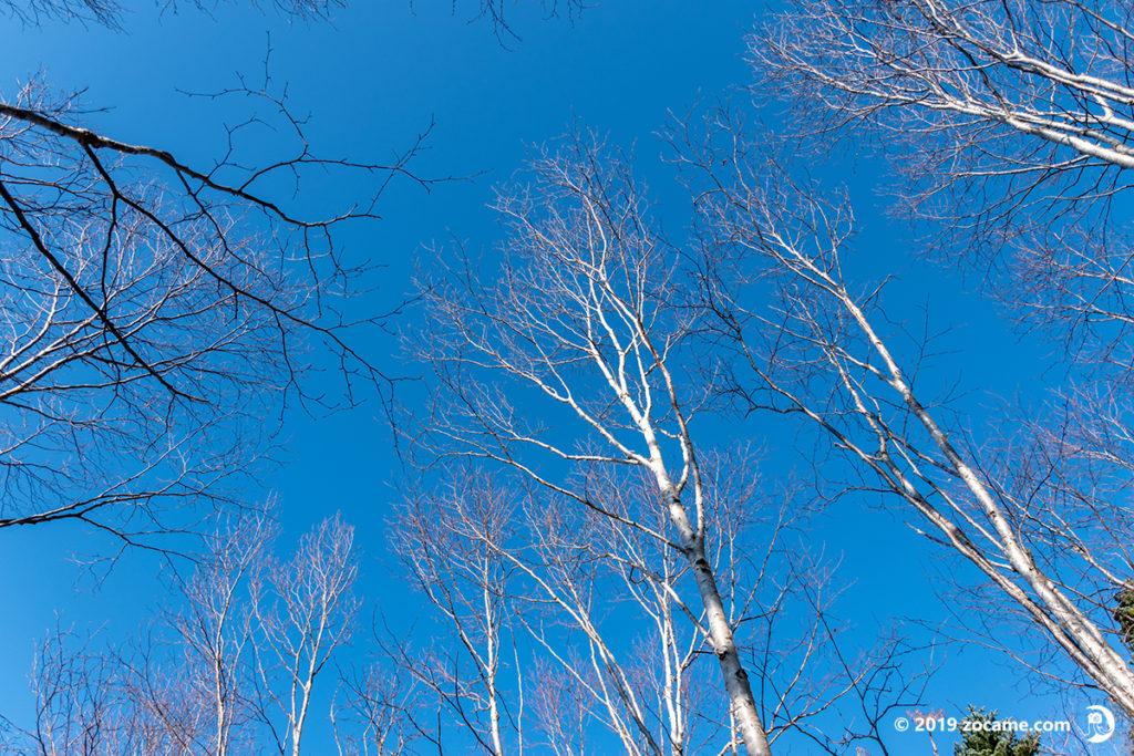 蓼科山登山口から11月登山